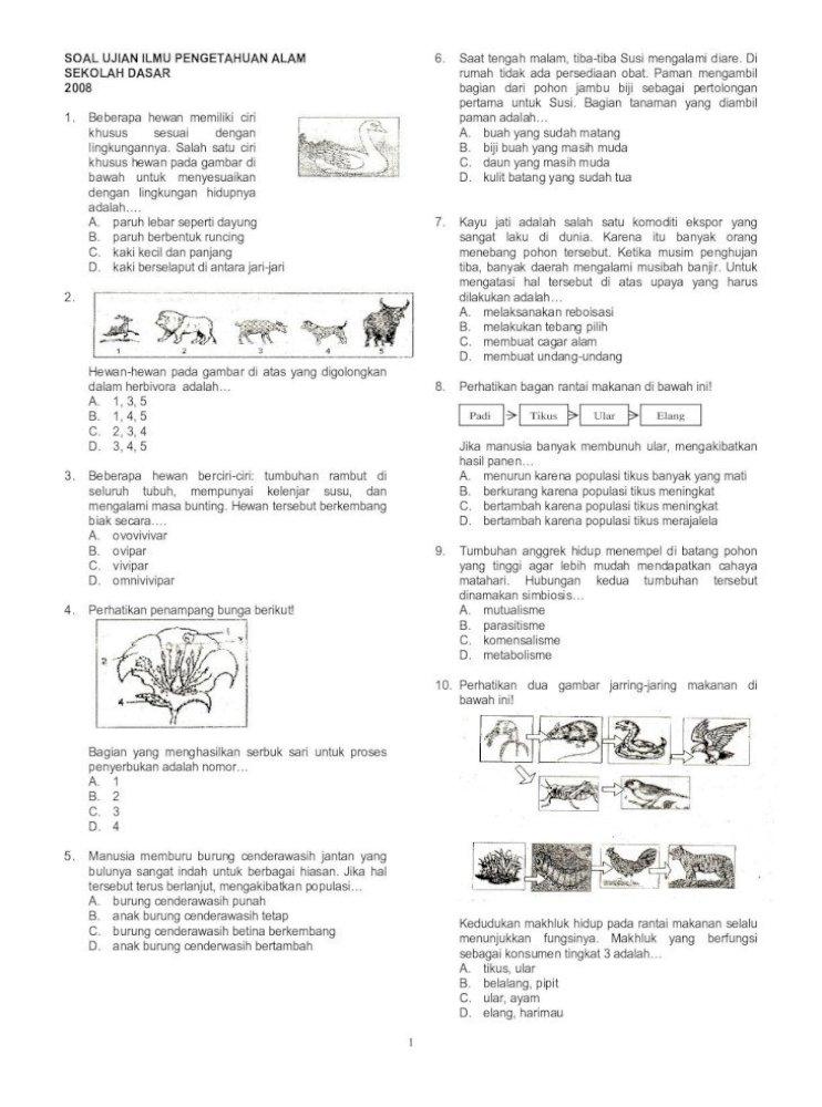 Ilmu Pengetahuan Alam Menunjukkan Fungsinya Pada Alat Seperti Pada Gambar Disamping Saat Pdf Document