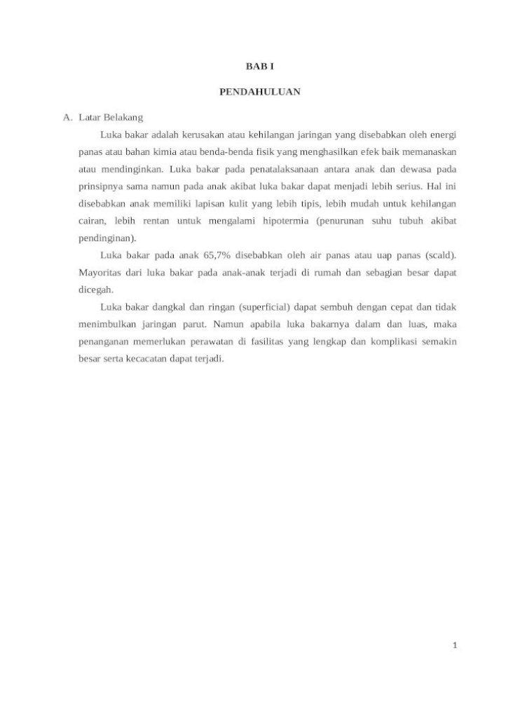 Luka Bakar Doc Document