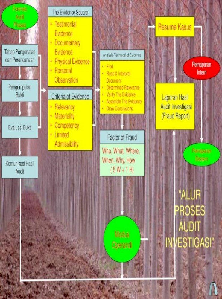 Simulasi Praktek Penyusunan Modus Alur Proses Audit Operasional Akuntansi 5 Operasional Lainnya Nasib Padmomihardjo Perbankan Penyimpangan Pemberian Fasilitas Pdf Document